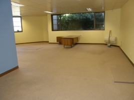 Before: Periodontist Kent Town Open area